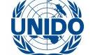 UN Industrial Development Organization